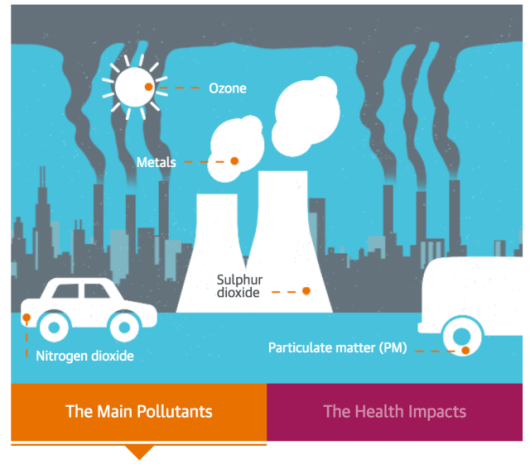air pollution and its affects on Pollution: causes, effects, and solutions for today and tomorrow high point university pollution 2 abstract this paper utilizes information from academic journals and books in order to explore the harmful effects of pollution on water sources and air quality and how to terminate the causes of.